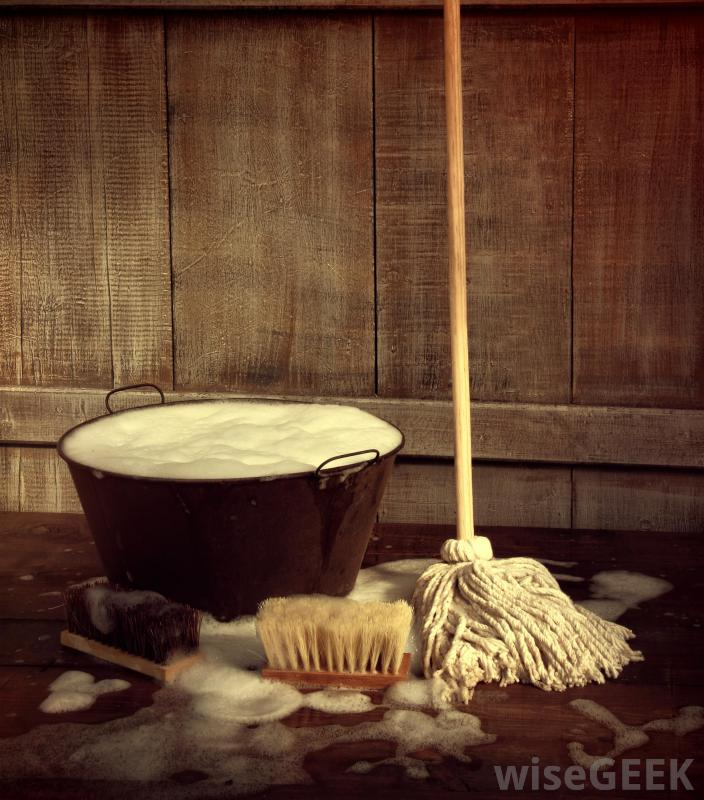 3/11/18-3/17/18 Mop-with-pan-of-soapy-water_orig