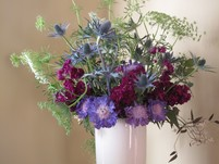 1/28/18- 2/3/18 Flower-color-wheel-scabiosa-holly-1024x768